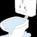 水のトラブル(トイレの詰まり①)の画像