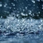 大雨時の水トラブル(トイレ詰まり②)の画像