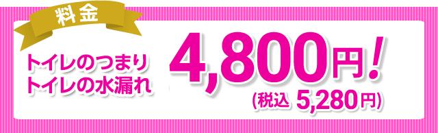 料金 トイレのつまり・トレイの水漏れ 4,800円!