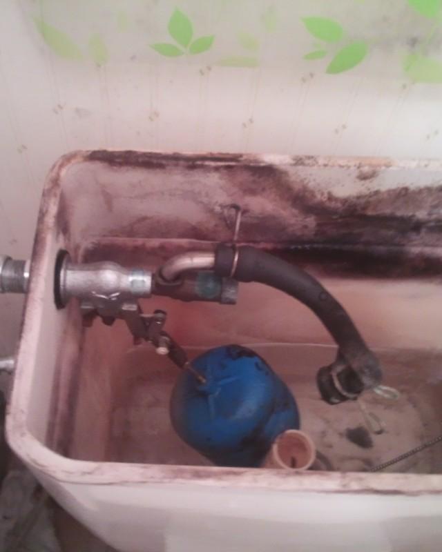 水のトラブル(トイレ水漏れの修理)の画像