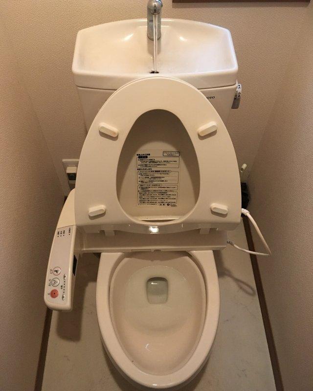 【水のトラブル】トイレの詰まり除去作業③の画像