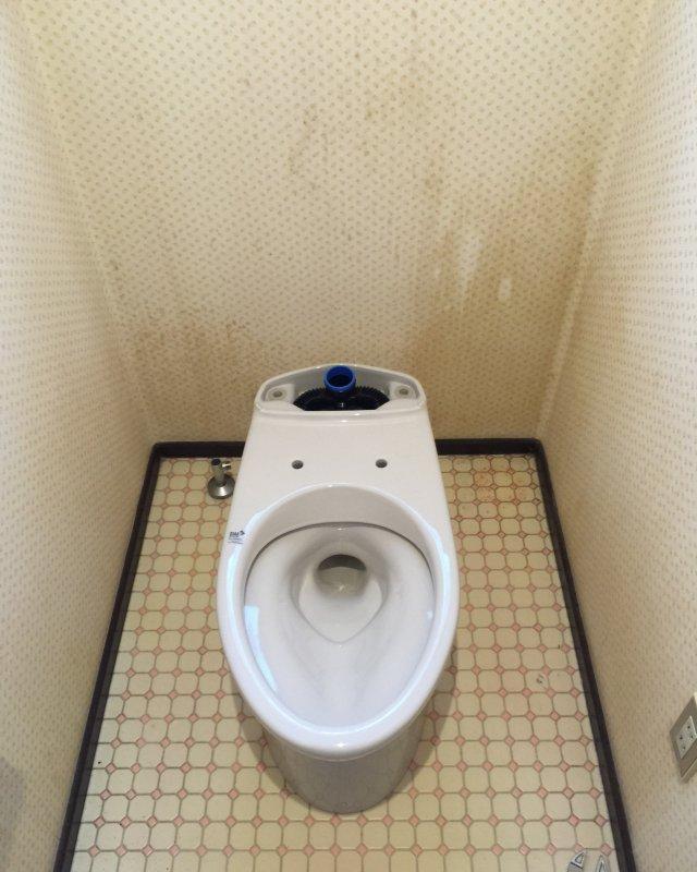 【水回りキャンペーン】トイレ交換作業④の画像